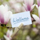 Frühlingsanfang Kosmetik Massage Wellness